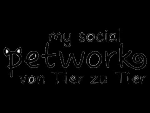 MySocialPetwork